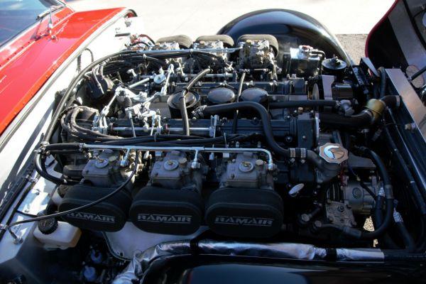dsc-1691-medium2A080CEA-FEF7-CE68-BCB5-D711F669F88A.jpg